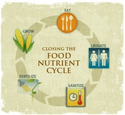 Food_Nutrient_Cycle_cropped
