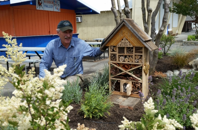 Mike&InsectHotel