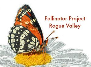 ThePollinatorProjectRogueValley